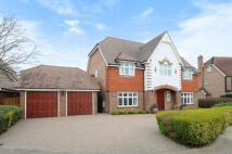 5 bed house to rent in Bucknall Way Beckenham...