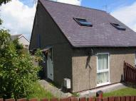 1 bed semi detached property to rent in BANGOR