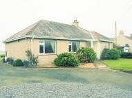 Detached Bungalow to rent in Tafarn Grisiau Road...