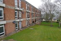 Studio flat in Hawthorn Gardens...