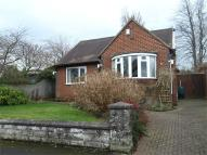 South Drive Detached Bungalow for sale