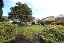 Detached Bungalow for sale in Sandy Lane, Irby, Wirral...