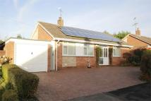 Detached Bungalow for sale in Stonebank Drive...