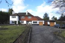 4 bedroom Detached property for sale in South...
