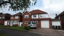 5 bedroom Detached property to rent in East Ewell