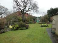 Semi-Detached Bungalow to rent in Beltinge Road, Romford...