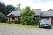 Semi-Detached Bungalow for sale in Penrhos...