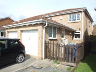 Grizedale Close semi detached property to rent