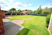 2 bed Detached Bungalow in Sheffield Road...