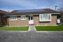 Detached Bungalow to rent in Holmshaw Grove...