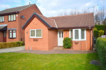 2 bed Detached Bungalow to rent in Parsley Hay Gardens...