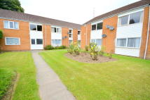 Flat to rent in Norwood Road, Sheffield...