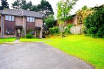 Pritchard Close Town House to rent