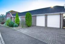 3 bedroom Detached Bungalow in Richmond Drive...
