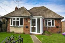 Detached Bungalow for sale in Eastern Road, Lydd...