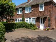 3 bedroom semi detached home to rent in Maple Avenue...