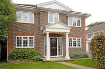 Petersfield Detached property to rent