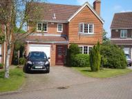 Detached house to rent in Lower Mead, Petersfield...