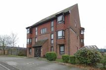 MEON CLOSE Studio flat to rent
