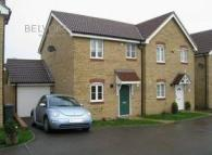 3 bed semi detached property to rent in Bulrush Avenue...
