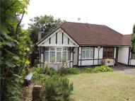 Bungalow for sale in Montpelier Road, Purley...
