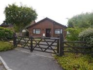 2 bedroom Detached Bungalow in Azalea Close, St. Ives...