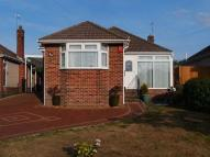 Detached Bungalow in Shapland Avenue...