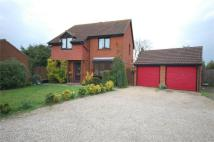4 bed Detached home in Grebe Close, Mayland...