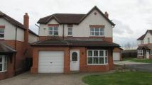4 bed Terraced house to rent in 4 Bed Detached in Family...