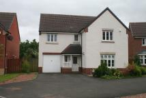 4 bed Detached Villa for sale in Oss Quadrant, Motherwell...