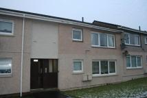 Flat to rent in Burnside Crescent...