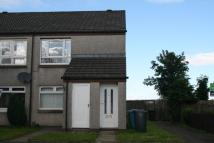 Ground Flat in Lewis Avenue, Wishaw, ML2