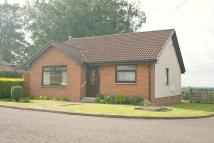 3 bed Detached Bungalow in Manse Court, Law, ML8