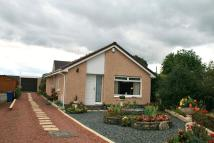 Detached Bungalow for sale in CARMICHAEL WAY, Law, ML8