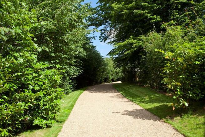 Path in summer.jpg