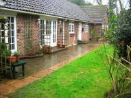 Cottage in Herne Street, Herne Bay...