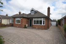 3 bedroom Detached Bungalow to rent in 48 Woodland Drive...
