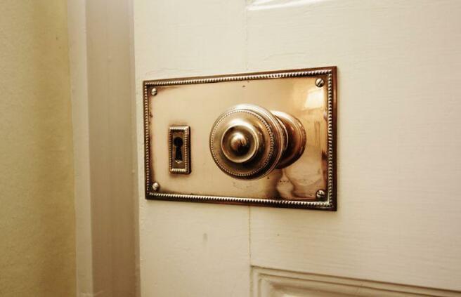 Brass Door Han...