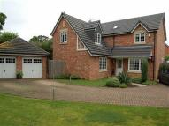 4 bed home in Pippin Lane, Rossett