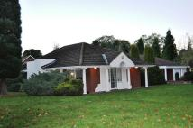 Detached Bungalow in South Drive, Woolsington...