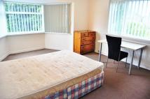 property to rent in Harbottle Avenue...