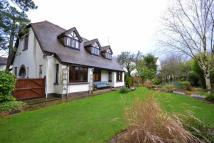 Hollybush Road Detached house for sale