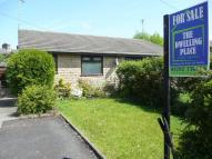 Bungalow to rent in Palmerston Street...