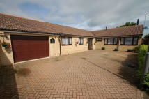 4 bed Detached Bungalow in Tofts Close, Titchmarsh...