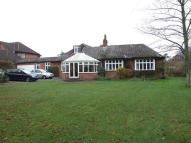 Bungalow to rent in The Street, Brundall