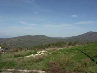 View - Paphos forest