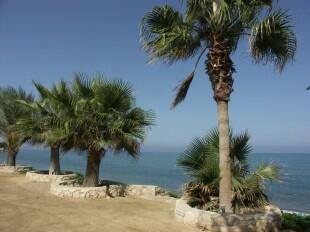 Near by beach