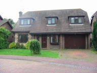 4 bed Detached home to rent in The Daisycroft, Henfield...