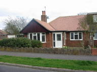 3 bed Semi-Detached Bungalow in The Rise...