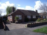 2 bed Semi-Detached Bungalow to rent in Manor Close, Henfield...